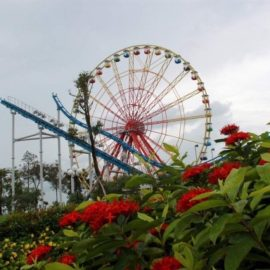 apollo-sidecar-ferris-wheel-555