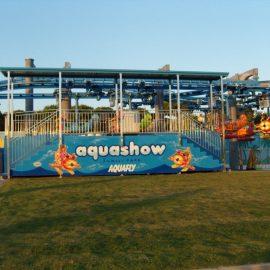 babyaviator21 amusement rides
