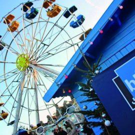 ferris-wheel-20-amusement-ride-sale7