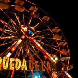 ferris wheel  20 amusement ride6