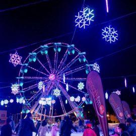 ferris-wheel-22-amusement-ride-sale1