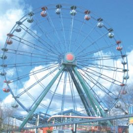 ferris wheel 34 mt amusement rides1