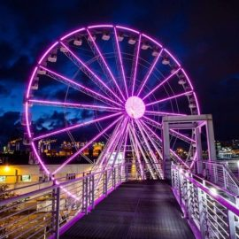 ferris-wheel-45-amusement-ride-sale2
