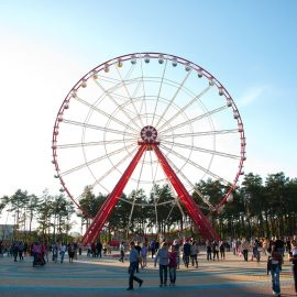 ferris wheel 55 mt amusement rides2