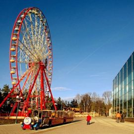 ferris wheel 55 mt amusement rides5
