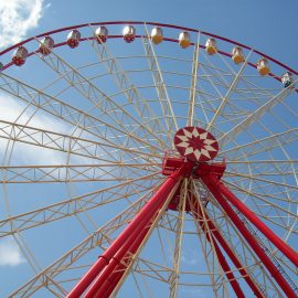 ferris wheel 55 mt amusement rides6