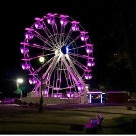 ferris-wheel-techical-park3