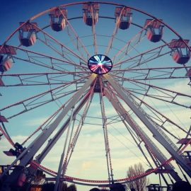 ferris-wheel-techical-park4