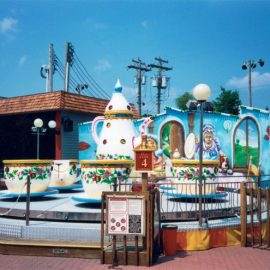 mini tea cup amusement rides5