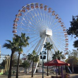 technical park amusement ride ferris wheel 40mt1