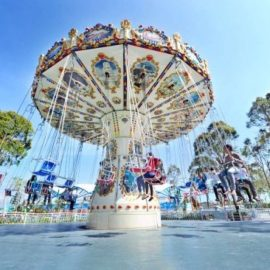 flying-swinger-amusement-ride-sale2