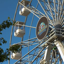ferris wheel 35 40-technical-park-amusement-rides2
