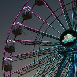 ferris wheel 35 40-technical-park-amusement-rides3