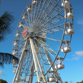 ferris wheel 35 40-technical-park-amusement-rides5