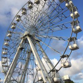 ferris wheel 35 40-technical-park-amusement-rides7