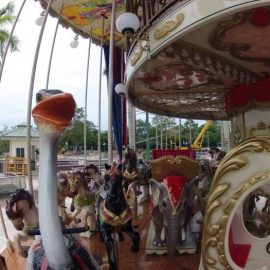 technical-park-amusement-rides-Merry Go Double Decker (2)