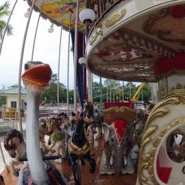 Merry Go Double Decker (2)
