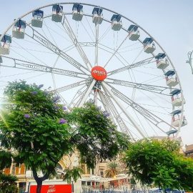Technical-park-ferris-wheel-2a