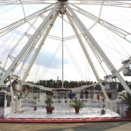 Technical-park-ferris-wheel-3213FW32newgond0
